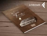 Feat_Ill_HP-IlariaMarinelli